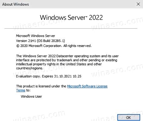 Server-2022-build-20285-winver